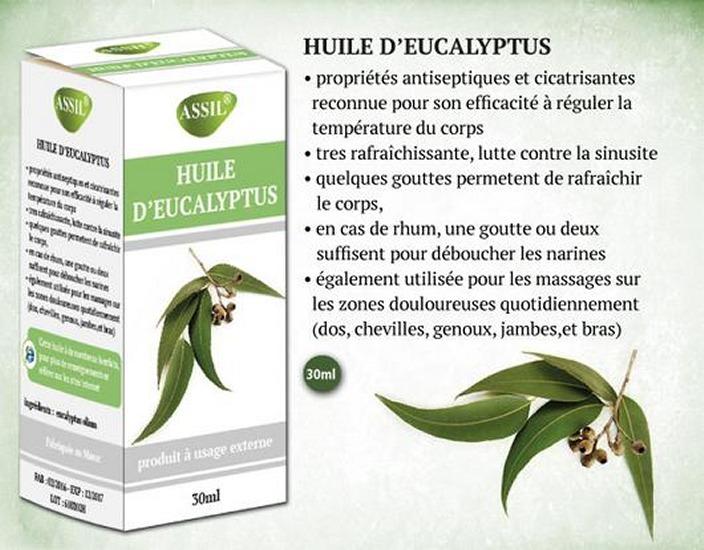 Huile d'Eucaplyptus